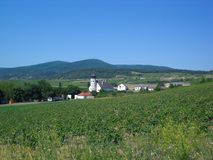 Thallern, rural settlement, Lower-Austria, Oak-Hill. Small village with church and farms, houses. Vineyard in the front, hills in the background Stock Photos
