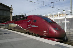 Thalys pociska pociąg Fotografia Royalty Free