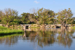 Thamalakane river, Botswana Royalty Free Stock Photography