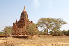 Thambula tempel, Bagan, Myanmar Royaltyfria Bilder