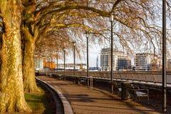 Thames ścieżka przy wyspa ogródami obrazy royalty free