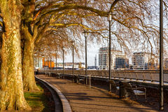 Thames Path at Island Gardens. London Royalty Free Stock Images