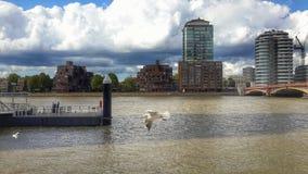 Thames widok Fotografia Royalty Free