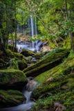 Thamsor nuo Waterfall Phukradueng National Park Stock Photo