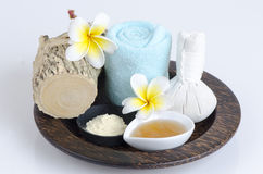 Thanakha powder and fresh milk for the skin feeling soft and smooth. Stock Photography
