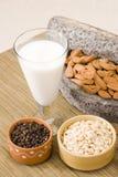 Thandai ou leite frio da amêndoa fotos de stock