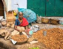 THANJAVOUR INDIEN - FEBRUARI 14: En oidentifierad kvinna i tradit royaltyfri bild