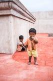 THANJAVUR INDIEN - FEBRUARI 14: Barnen, en pojke och en flickanolla Royaltyfri Fotografi