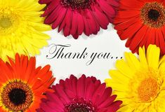 Thank you. A macro of a thank you note with gerberas surrounding stock image