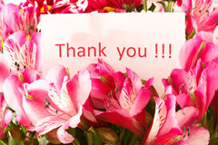 `Thank you`. Brief thank you on the background of a flower Stock Photography