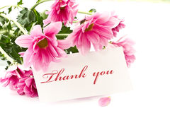 Thank you. Say thank you on a background of beautiful flowers Stock Photography