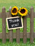 Thank you. Chalkboard with text and sunflowers in the garden Royalty Free Stock Photos