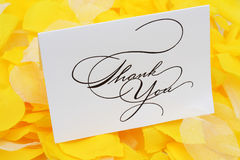 Thank You. Card on yellow flower petals stock photo