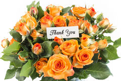 Thank You Card with Bouquet of Orange Roses. On a White Background Stock Image