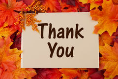 Thank You card with fall leaves. Thankful at Thanksgiving royalty free stock photo
