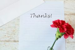 Thank you card with flowers royalty free stock photos