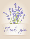 Thank you card with lavender Royalty Free Stock Photography