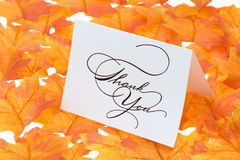 Thank you card with a leaves stock image