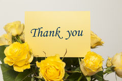 Thank you. Card and roses Royalty Free Stock Images