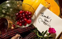 Handwritten holiday thank you Card with Cranberry. Thank you note in Thanksgiving or autumn harvest gift basket with seasonal fruit and cranberry sauce with Stock Images