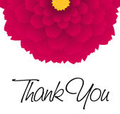 Thank you - card. Vector illustration royalty free illustration