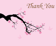 Thank You Card. Vector illustration of cherry blossom with birds thank you card Royalty Free Stock Photos