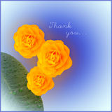 Thank you card. With yellow flowers Stock Images