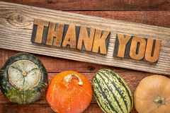 Thank you in fall holiday decoration. Thank you in letterpress wood type against weathered wood with winter squash - Thanksgiving theme Stock Image