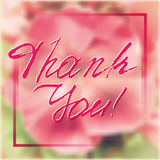 Thank You. Grateful card with lettering. Grateful card with hand written lettering Thank You on natural pink floral phlox blurry background. Vector illustration Stock Photography