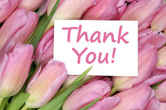 Thank You on greeting card gift with tulips flowers Stock Photography