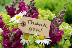 Thank you. Greeting card with snapdragons, daisies and text: Thank you stock photos