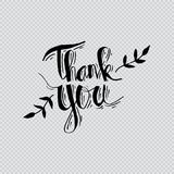 Thank you hand lettering. With transparent background Stock Images