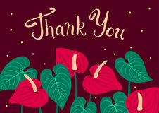 Thank you hand written lettering text floral greeting card with anthurium flowers Royalty Free Stock Photos