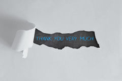 Thank You Lettering Royalty Free Stock Photos