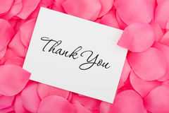 Thank You with Love. A thank you card sitting on a pink flower petal background, thank you with love Stock Photos