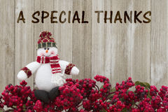 Thank you message. Frost covered red holly berries with a snowman on weathered wood background with text A Special Thanks royalty free stock image