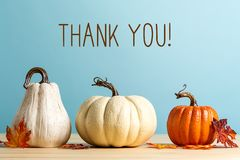 Thank you message with pumpkins. On a blue background stock image