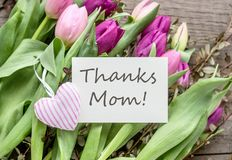 Thank you mom. Greeting card for Mother`s Day with pink and violet tulips and heart Stock Photo