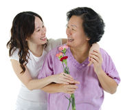 Thank you mother Stock Images