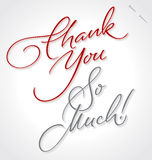 THANK YOU SO MUCH hand lettering (vector) Royalty Free Stock Photo