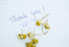 Thank you note Royalty Free Stock Photography