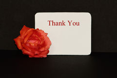 Thank You note with rose Royalty Free Stock Photo