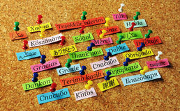 Thank You pin. Thank You Word  on colorful paper different languages pinned on cork board Royalty Free Stock Photography