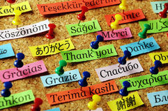 Thank You pin. Thank You Word  on colorful paper different languages pinned on cork board