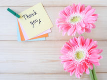 Thank you 10 Stock Images