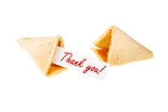 Thank you! - single fortune cookie Royalty Free Stock Image