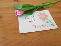 Thank you Teacher, Thank You Note With Tulip royalty free stock photography
