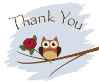 Thank You. Vector thank you card with owl and a rose vector illustration