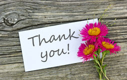 Thank you. White card with lettering thank you and red flower Stock Photography