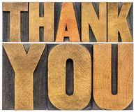 Thank you wood type abstract Royalty Free Stock Image